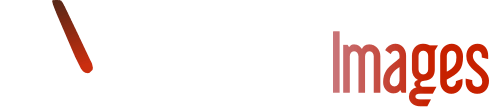 Mondele Images